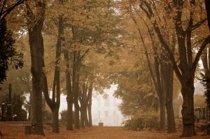 2013-10-22-zentralfriedhof-373